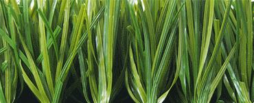 Изображение монофиламентной газонной травы зеленого цвета с высотой ворса 40 мм